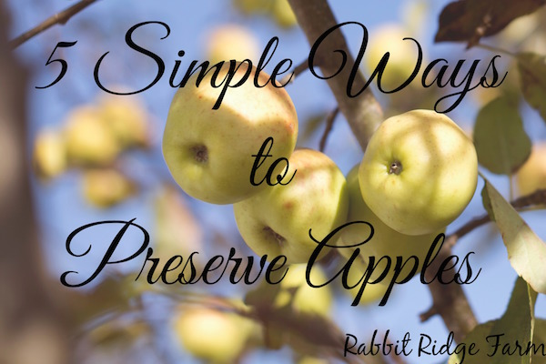 5 Simple Ways to Preserve Apples