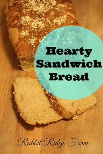 Hearty Vegan Sandwich Bread
