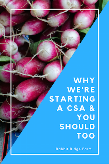 were-starting-a-csa-you-should-too