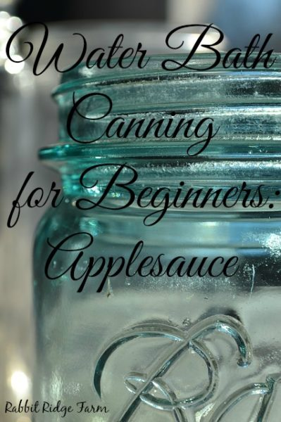 Water Bath Canning for Beginners: Applesauce