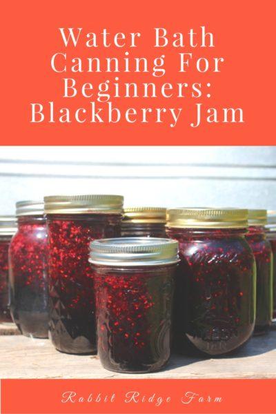 Water Bath Canning for Beginners: Blackberry Jam